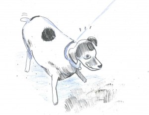 chien-emboinpoint