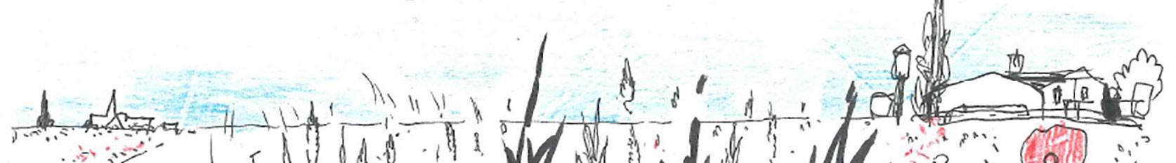 cropped-Campagne1_1674x233.jpg